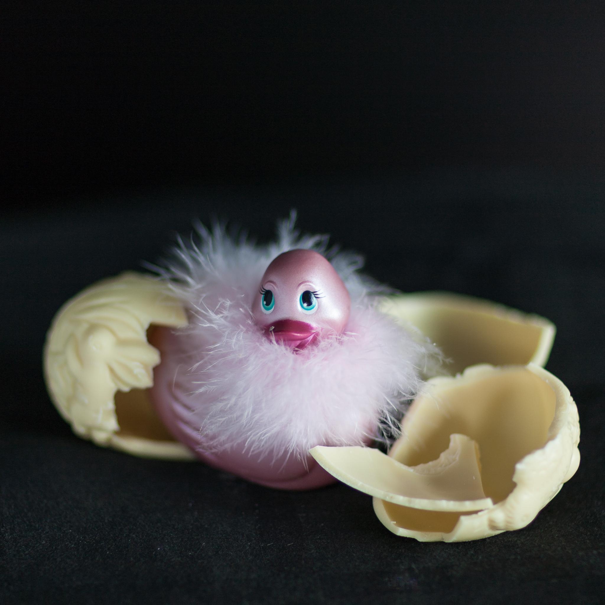 #duckie Hatching