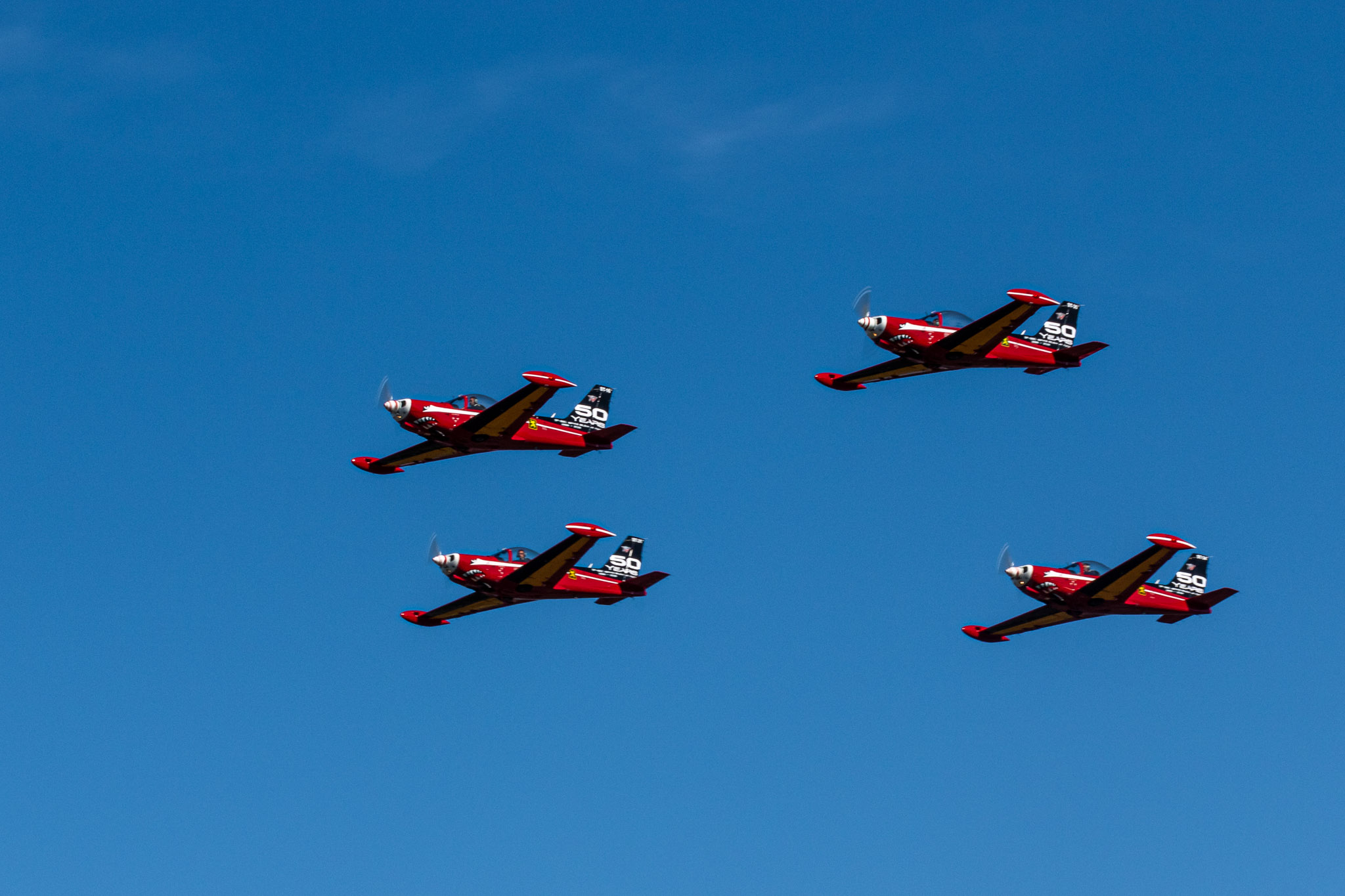 BAF Red Devils Flying SIAI-Marchetti SF.260